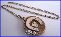 GORGEOUS ANTIQUE GOLD LUCKY HORSESHOE LOCKET AND 22 INCH 9ct GOLD CHAIN