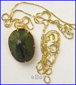 REAL SCARAB BEETLE AMULET / PENDANT. SOLID 9ct GOLD CHAIN. OVER 150 YEARS OLD